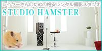 Studio Hamster